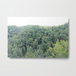 Trees at Natural Bridge State Park Metal Print