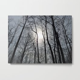 White Sky, Black Trees Metal Print