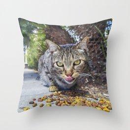 Grey cat eating Throw Pillow