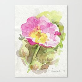 Wild Summer Rose Canvas Print