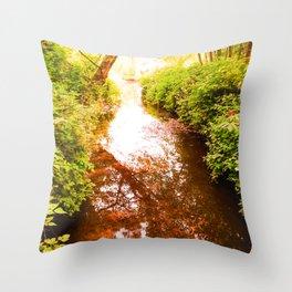 Eagle Creek II Throw Pillow