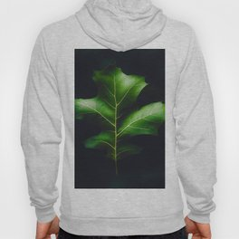 The Leaf (Color) Hoody
