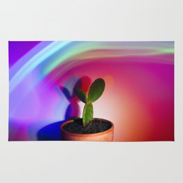 Supercolor Cactus Rug