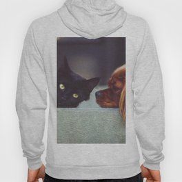 CAT - DOG - LYING - DOWN - ANIMALS - FRIENDS - PHOTOGRAPHY Hoody