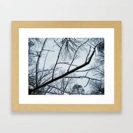 Little Ice Tree Framed Art Print