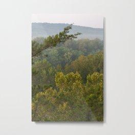 Castlewood Trees Metal Print