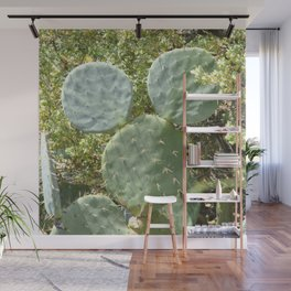Mickey Cactus | Greek Nature Wall Mural