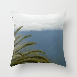 Coroico villa 1 Throw Pillow