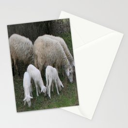 The Really Ewesful Company Stationery Cards