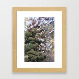 Blossom Framed Art Print