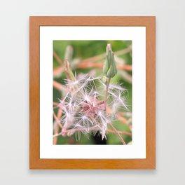 Weeds I Framed Art Print