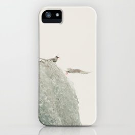 Flock of birds on the ice iPhone Case