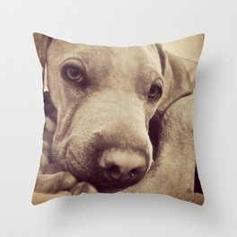 Dogs are Family Throw Pillow