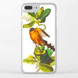 Mangrove Cuckoo Clear iPhone Case
