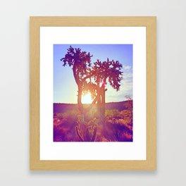 Cactus Glow Framed Art Print