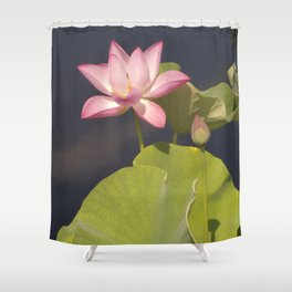 Pink Lotus by Teresa Thompson Shower Curtain