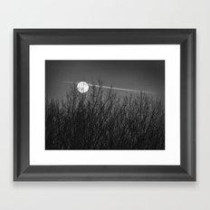 Moon Over Winter Trees Framed Art Print