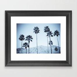 Desert Palms Framed Art Print