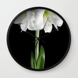 White amaryllis Wall Clock