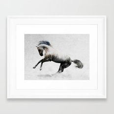 White Stallion Framed Art Print