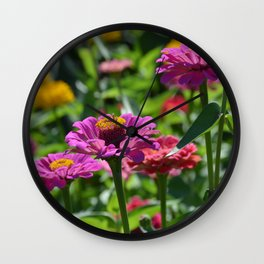 Pink Zinnias Wall Clock
