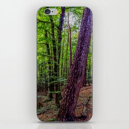 Forest Landscape iPhone Skin