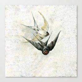 Vintage Soaring Birds Canvas Print