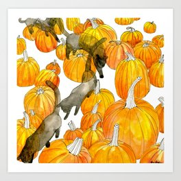 Time Lapse with Pumpkins Art Print