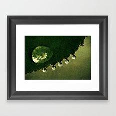 Leaf Drops Framed Art Print