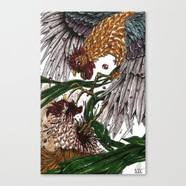 Cock Fight  Canvas Print