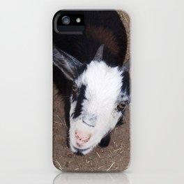 Curious goat iPhone Case