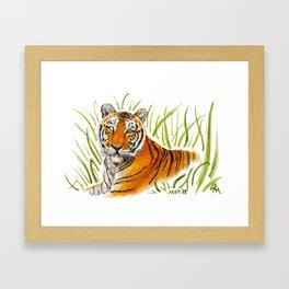 Zeus Tiger Bright Eyes Framed Art Print