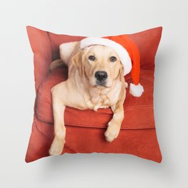 Dog with Christmas hat on armchair Throw Pillow