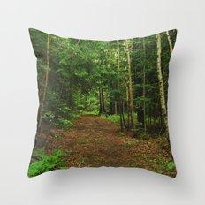 Pathfinder I Throw Pillow