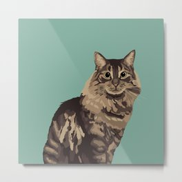 The Long-Haired Tabby Cat Metal Print