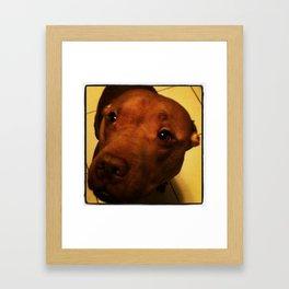 Jun-Bug.  Astoria, NY. Framed Art Print