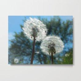 Dandelion Trees Metal Print