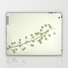 Vitamin D Laptop & iPad Skin