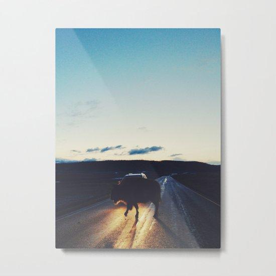 Bison in the Headlights Metal Print