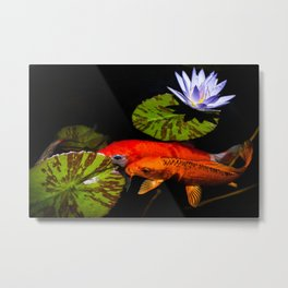 Koi Play In The Pond Photograph By Priya Ghose Metal Print
