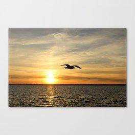 Seagull Silhouette Canvas Print