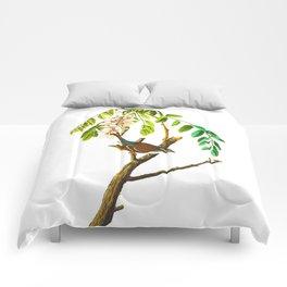 Chipping Sparrow Bird Comforters