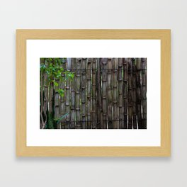 Dreamy Bamboo Framed Art Print