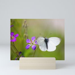 White Butterfly Natural Background Mini Art Print