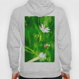 Wildflowers and grass Hoody