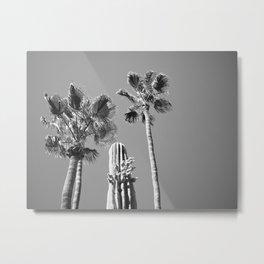 Arizona Black and White Metal Print