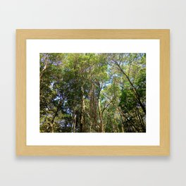 Trees in the Wild Framed Art Print