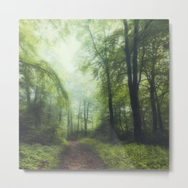 the Scent of Summer - Misty Forest Metal Print