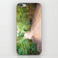 Road to Home iPhone & iPod Skin
