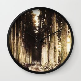 Alone in the woods of Nikko Wall Clock